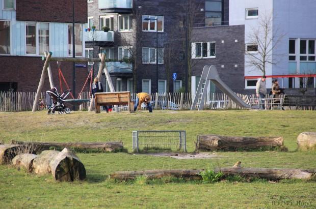 Espace récréatif sur l'île de Haveneiland, Amsterdam