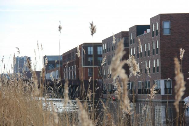 Logement sur l'île de Haveneiland, Amsterdam