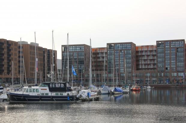 Marina sur l'île de Haveneiland, Amsterdam